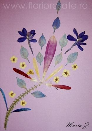 Model-geometric-flori-presate