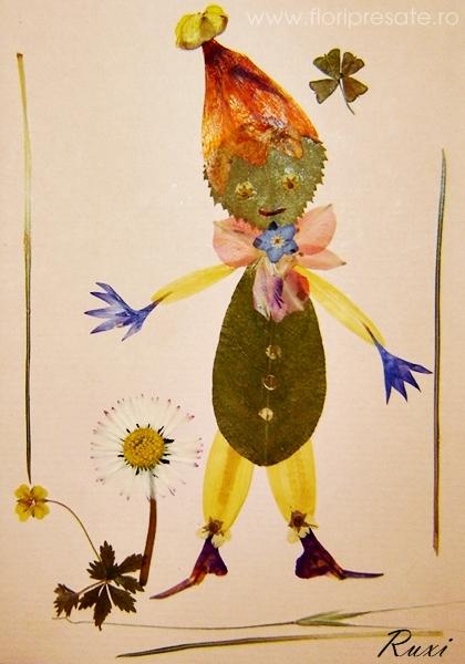 Spiridus-flori-presate