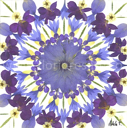 Mandala-iarna-flori-presate