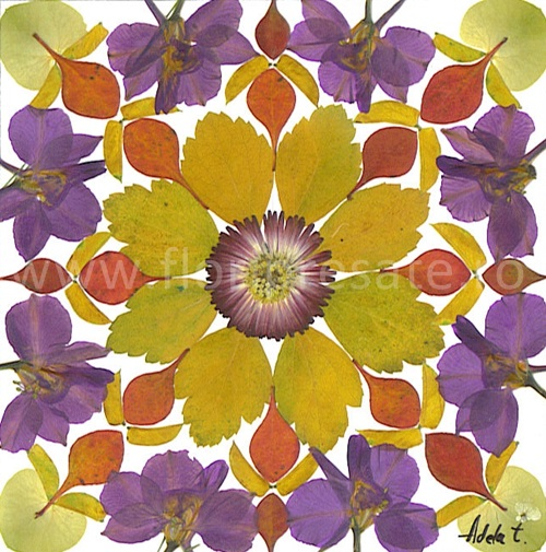 Mandala-toamna-flori-presate