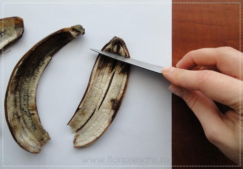 FloriPresate-banane3