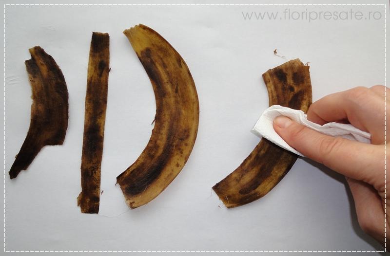 FloriPresate-banane5
