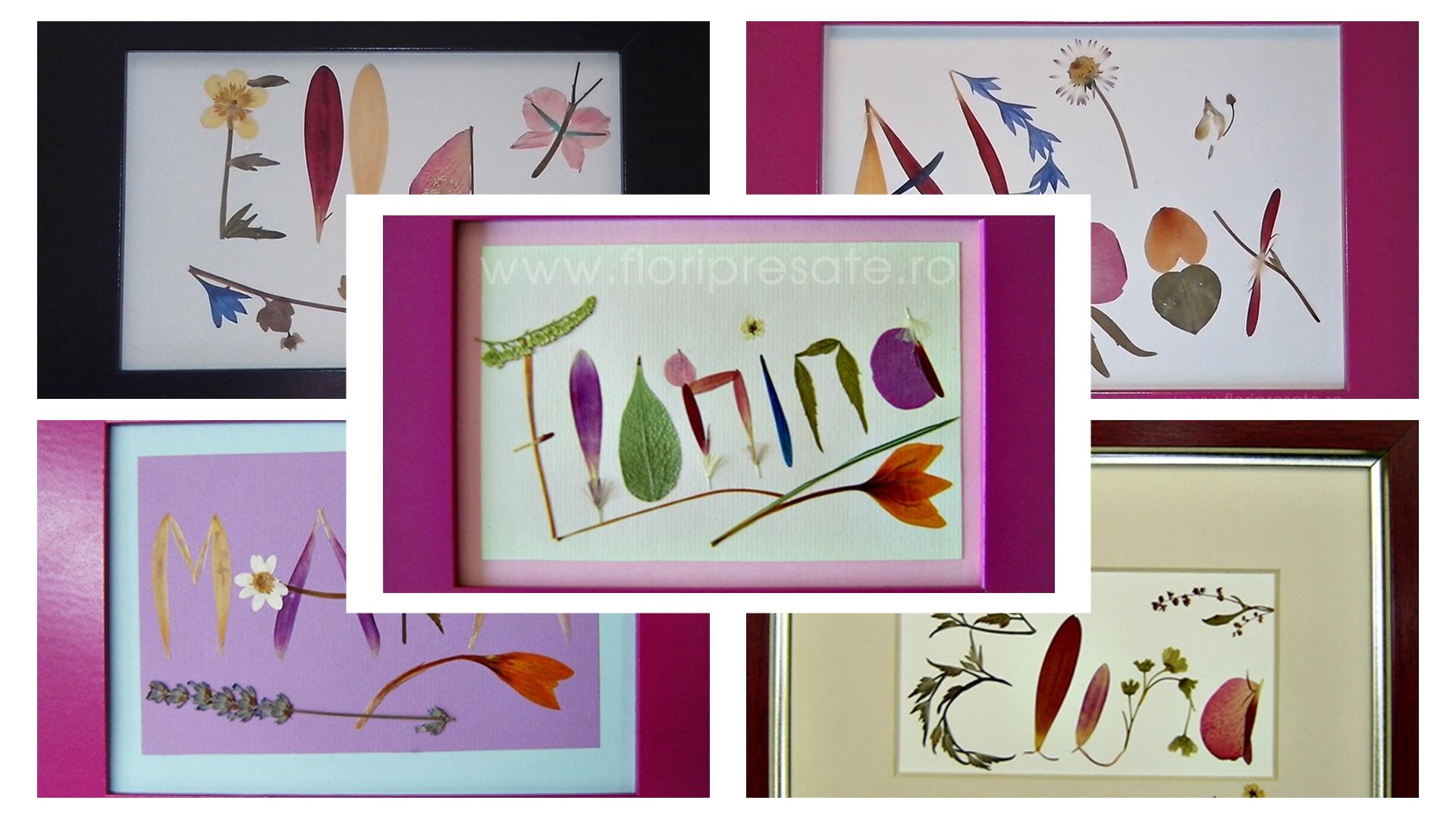 Banner-Florii-FB