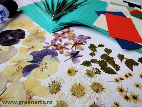 art-consiliere-flori-presate1